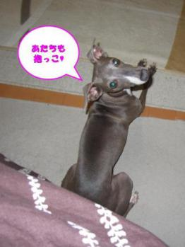 0803抱っこ_02