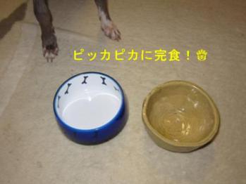 0806枝豆_09