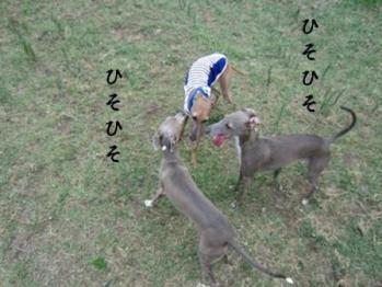 0814東扇島_09
