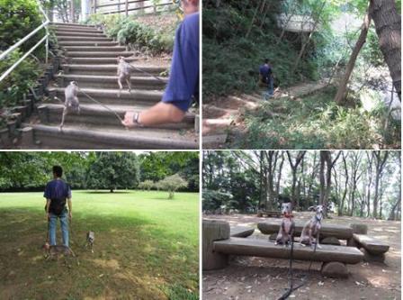 0816森林公園_02a