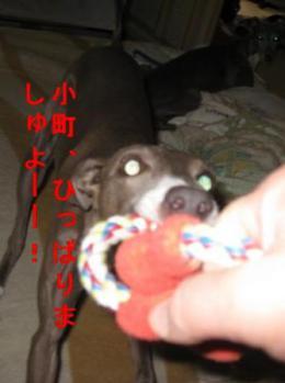 0817おもちゃ_01