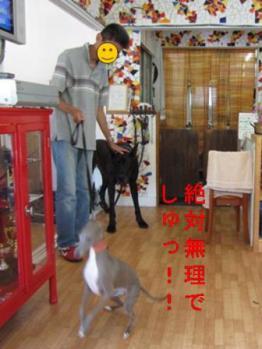 0908山中湖_06