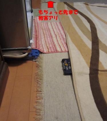 1205絨毯_05