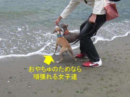 0512_お泊り合宿03