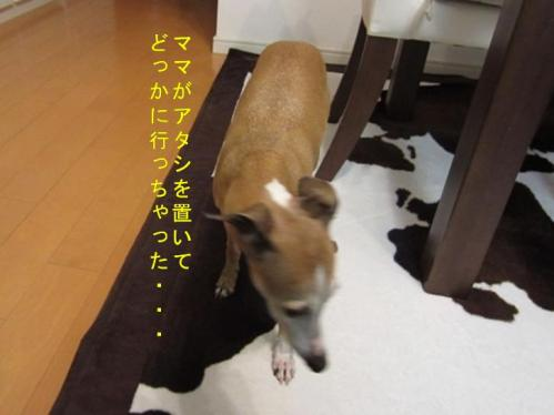0512_お泊り合宿08