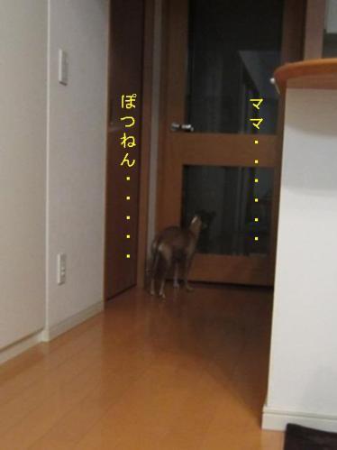 0512_お泊り合宿07