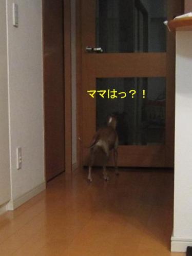 0512_お泊り合宿11