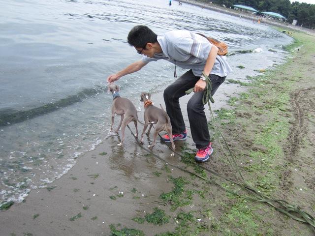 0617海の公園_10