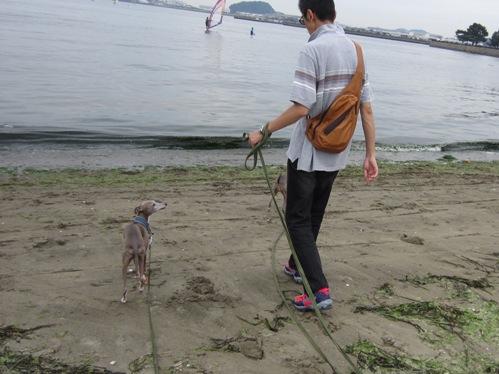 0617海の公園_07