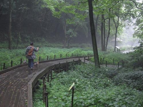 0707森林公園_09