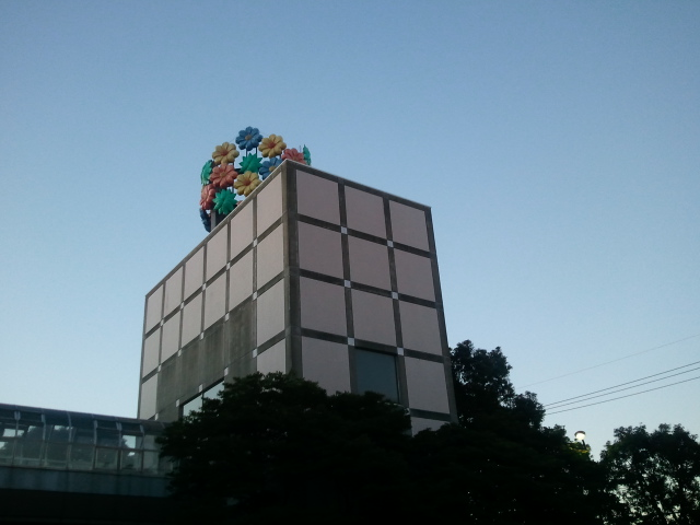 2011-01-31 06.49.02