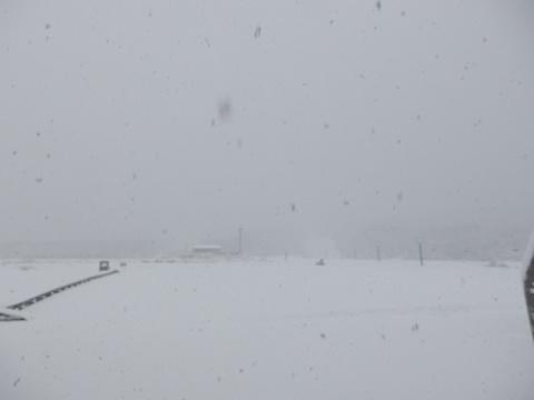 雪・・です