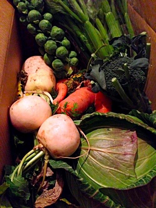 3三竹さんの「あまっ娘野菜」