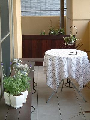 garden0402_2012.jpg