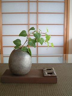 green0516_2012_2.jpg