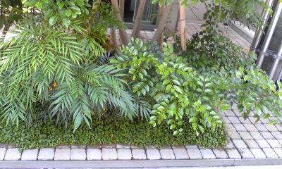 nakazaki0519_2012_2.jpg