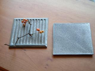 plate1028_2011_12.jpg