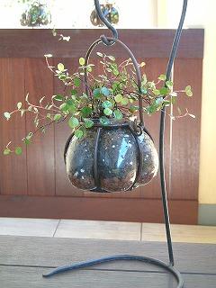 wireplant0220_2012_4.jpg