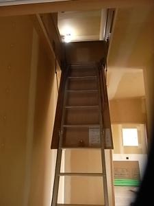 あっ。秘密の階段が~!