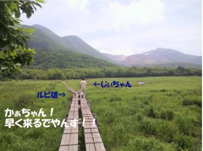 20110606-6(セリフ)