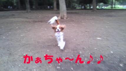 20110613-3(セリフ)