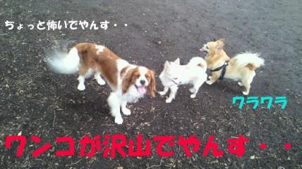20110613-11(セリフ)