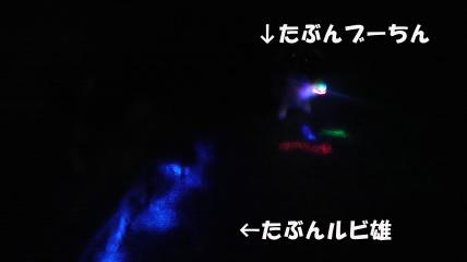 20110718-10(セリフ)