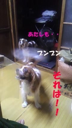 20110718-7(セリフ)