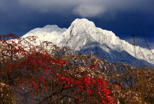 2009.04.27-八ヶ岳冠雪-02