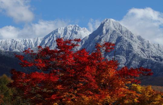 2010.11.03-八ヶ岳-04