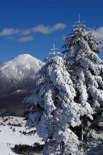 2009.12.21-クリスマス