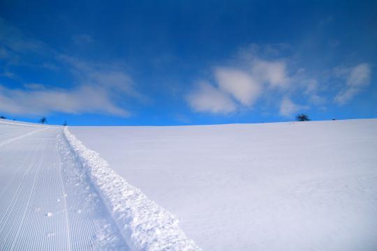 2008.02.04-圧雪車跡-01