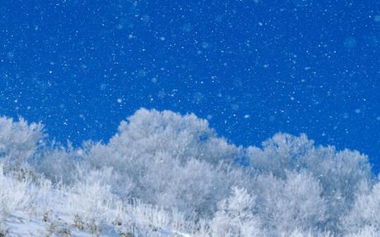 晴雪-02