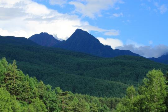 2011.07.11-八ヶ岳-14