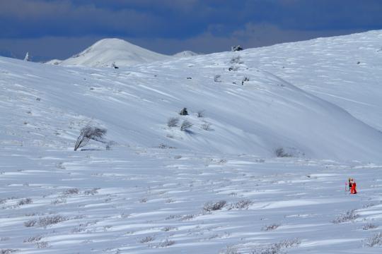 2011.03.03-雪原-01