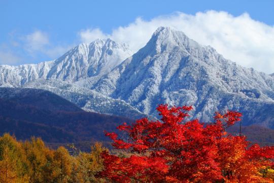 2010.11.03-初冠雪-03