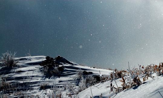 2011.01-キラキラ-02