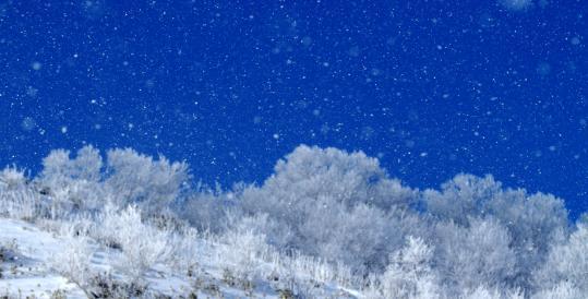 2011.01-晴れ雪-01