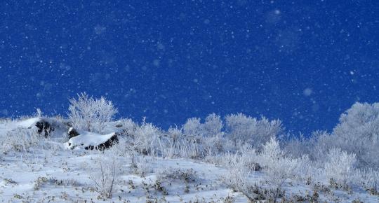 2011.01-晴れ雪-02