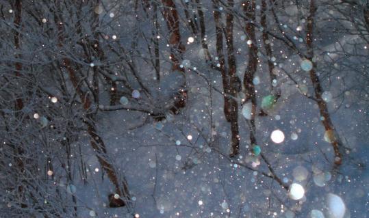 2011.01-キラキラ-01