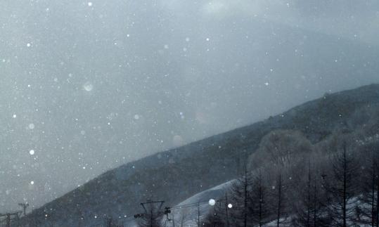 2011.01-キラキラ-07