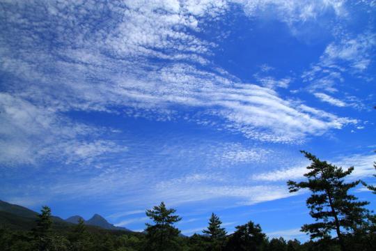 2011.09.08-キノコの空-16