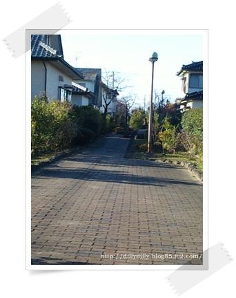 2011_1202_135900-SBSH0044.jpg