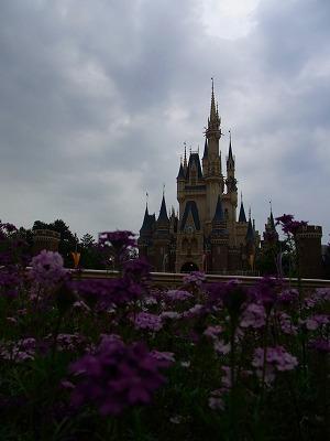 花と城_3
