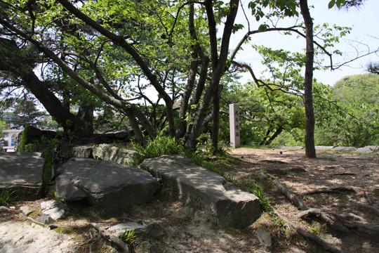 20100503_tokushima_castle-14.jpg