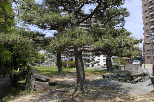 20100503_tokushima_castle-16.jpg