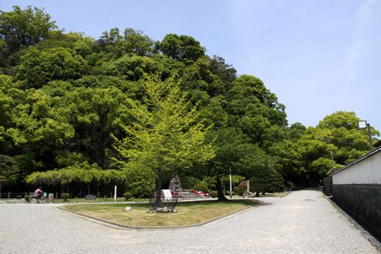 20100503_tokushima_castle-17.jpg