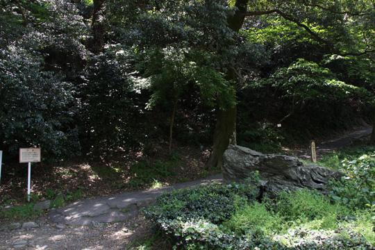 20100503_tokushima_castle-24.jpg