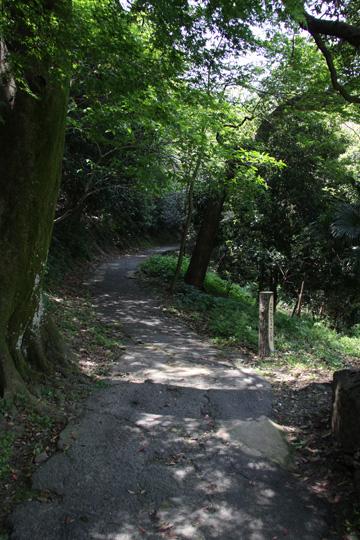 20100503_tokushima_castle-25.jpg