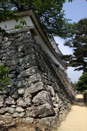 20100505_kochi_castle-92.jpg
